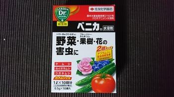 curry_leaf_20170527_01.jpg
